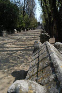 Les Alyscampes, romersk gravplass, Unesco, Verdensarv, Arles, Provence, Sør-Frankrike, Frankrike
