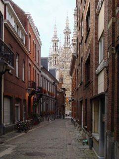 Stadthuis, Eikstraat, Leuven, Flandern, Belgia