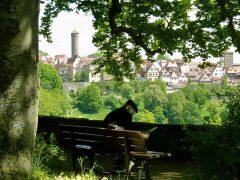Burggarten, Rothenburg ob der Tauber, Bayern, Sør-Tyskland, Tyskland