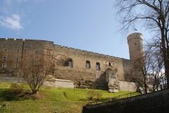 Lange Herman, bymur, Rådhusplassen, Tallinn, historisk, gamleby, Estland, Unesco Verdensarven, Estland, Baltikum