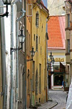 Smug, brostein, Rådhusplassen, Tallinn, historisk, gamleby, Estland, Unesco Verdensarven, Estland, Baltikum