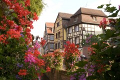 blomsterpyntet, Colmar, bindingsverk, kanaler, Petit Venice, Nord-Frankrike, Frankrike