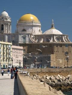 Katedral, Cadiz, historisk bydel, romersk teater, gamleby, Casco Antiguo, Andalucia, Spania