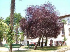 Porec, gamlebyen, historisk bysenter, Unescos liste over Verdensarven, Istria, Kroatia