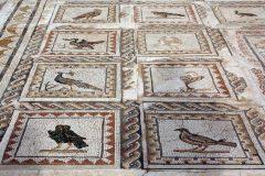 Italica, romertid, Sevilla, Guadalquivir, Unescos liste over Verdensarven, historisk bydel, gamleby, Andalucia, Spania