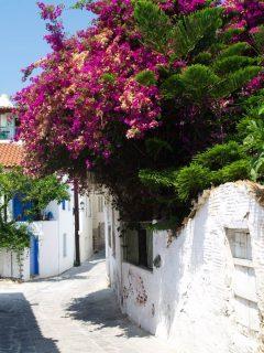 Skiathos, Hellas