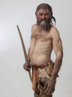 Ötzi, arkeologisk museum, gamlebyen, Altstadt, Bolzano, Bozen, Alto Adige, Tyrol, Süd-Tirol, Nord-Italia, Italia