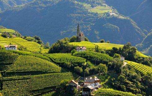 St Georgen, vinmarker, Bolzano, Alto Adige, Tyrol, Nord-Italia, Italia
