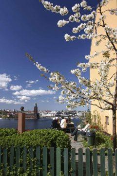 Stockholm, Gamla Stan, Södermalm, gamlebyen, Unesco Verdensarv, Sverige