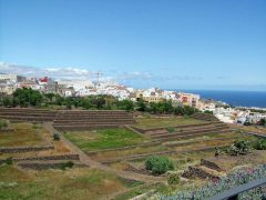 Tenerife, Guimar, Thor Heyerdahl, Kanariøyene, Spania